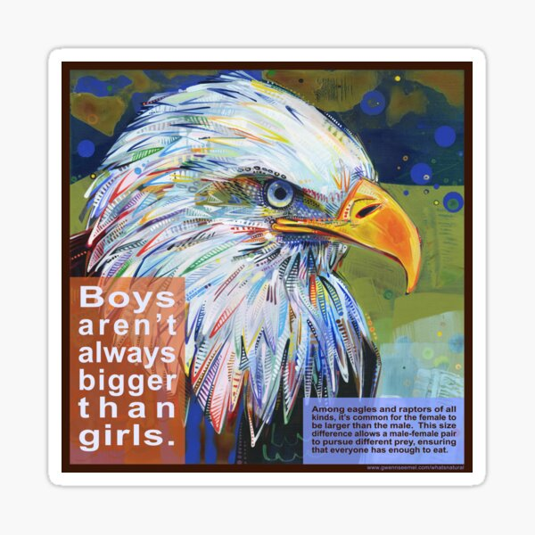 Queen of the Sky (Bald Eagle) Sticker