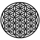 Flower of Life (black) sacred geometry symbol  by Leah McNeir