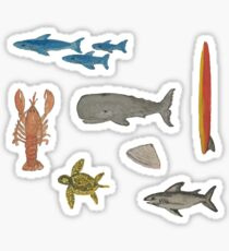 Sea Life Hand-Painted Watercolors of Whale, Shark, Lobster  Sticker