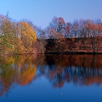Indian summer reflections at the pond | waterscape photography by patrickjobst