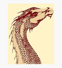 Petoskey Dragon Photographic Print