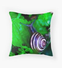Swirly Shelled Snail  Throw Pillow