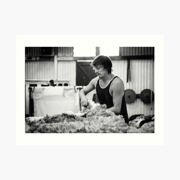 Shearing #11 ... Clifton Farm , Dumbleyung  Art Print