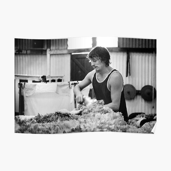 Shearing #11 ... Clifton Farm , Dumbleyung  Poster
