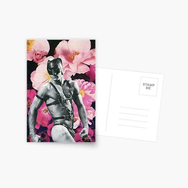 Dainty Maid Postcard
