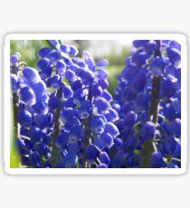 Little Purple Bells Sticker