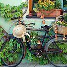 Never dump your old bike by Arie Koene