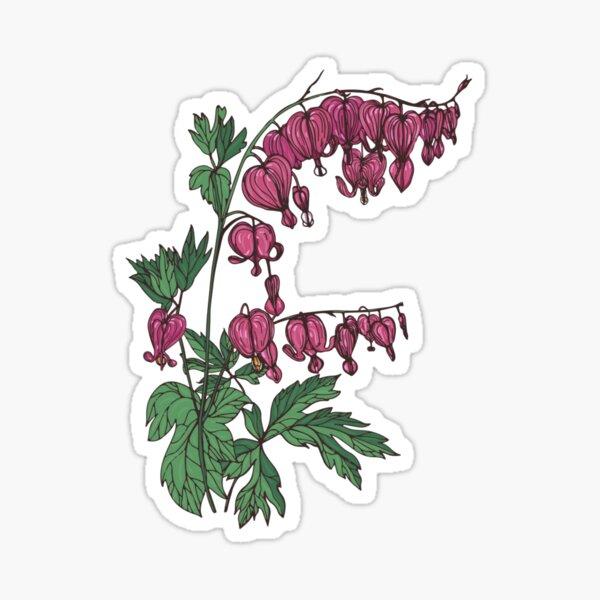 Bleeding heart with leaves  Sticker