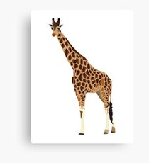 Giraffe, Graphic Design Canvas Print