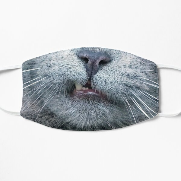 Funny - Close Up Grey Cat Face Mask - Cat Flat Mask