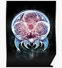 The Epic Metroid Organism  Poster