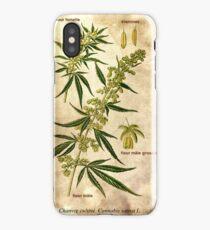 Marihuana plant iPhone Case/Skin