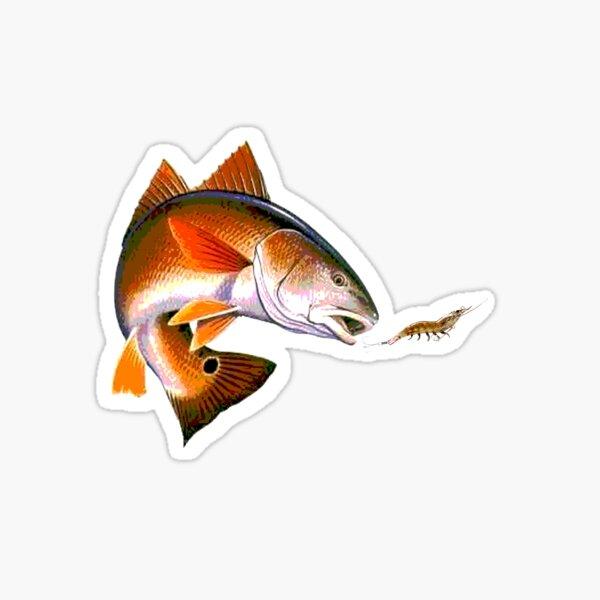 Redfish after shrimp Sticker