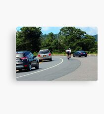Sharing the Road Canvas Print