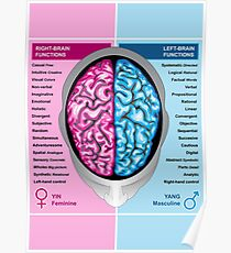 Human brain left and right functions vector Poster