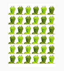 Kermit the Frog Photographic Print