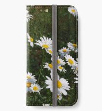 Daisy May iPhone Wallet/Case/Skin