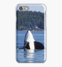 Curious Killer Whale iPhone Case/Skin
