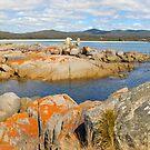 Bay of fires , Tasmania by Glen Johnson