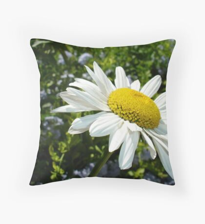 Close Up Common White Daisy With Garden  Throw Pillow