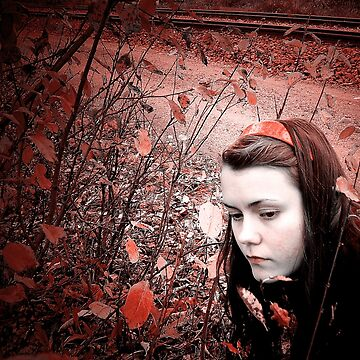 Red Autumn by LFimM3