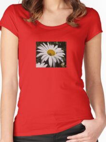 Close Up Common Daisy with Winged Insects Women's Fitted Scoop T-Shirt