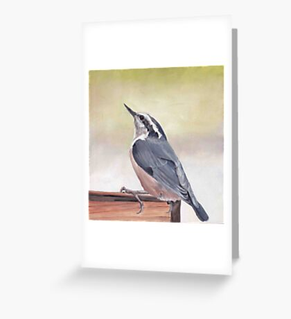 Red Breasted Nuthatch Greeting Card