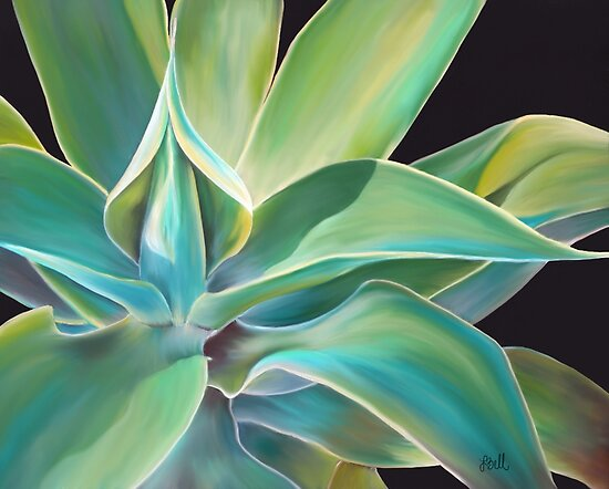 Blue Agave by Laura Bell