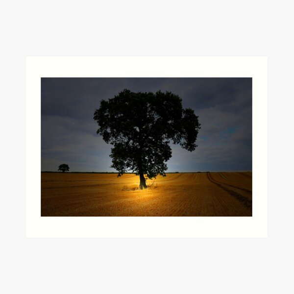 THE TREE IN THE FIELD Art Print