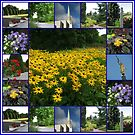 The Garden of the Lord - Floral Collage by BlueMoonRose
