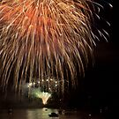 Fireworks Ver 0001 by Tony  Bazidlo