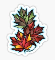 Maple Leaves for Fall Sticker