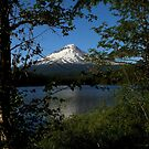 Mountain Views From The Lake ~ Part Two by artisandelimage