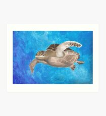 Turtle on an ocean adventure Art Print