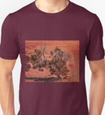 Arid Shrub T-Shirt