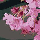 Beautiful Pink Sakura Cherry Blossoms Illustration 2 by Beverly Claire Kaiya