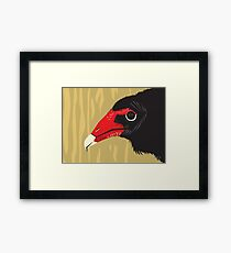Crikey the Turkey Vulture Framed Print
