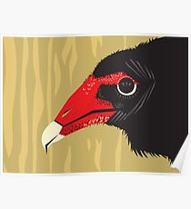 Crikey the Turkey Vulture Poster