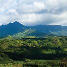 Kauai Mountain View by TripleStrikeM