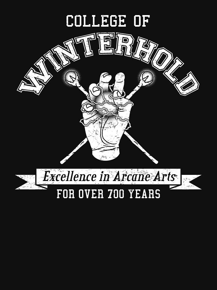 Skyrim - College of Winterhold by gamingapparel