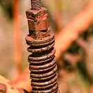 Rusty Spring by Thaddeus Zajdowicz