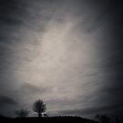 Cleeve Hill by Matthew Siller