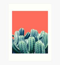 Cactus on Coral #redbubble #lifestyle Art Print