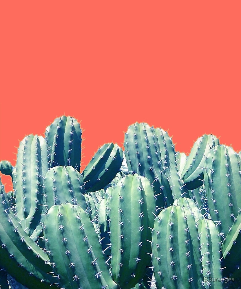 Cactus on Coral #redbubble #lifestyle by 83oranges
