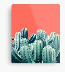 Cactus on Coral #redbubble #lifestyle Metal Print