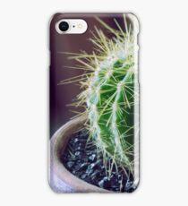 Little cactus iPhone Case/Skin