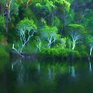 Pittwater Reflections  - Church Point - The HDR Experience by Philip Johnson