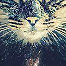 Cosmos cat by jordygraph