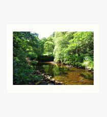 Quintessentially England - 24 - Limpid Pool - Please read Description Art Print