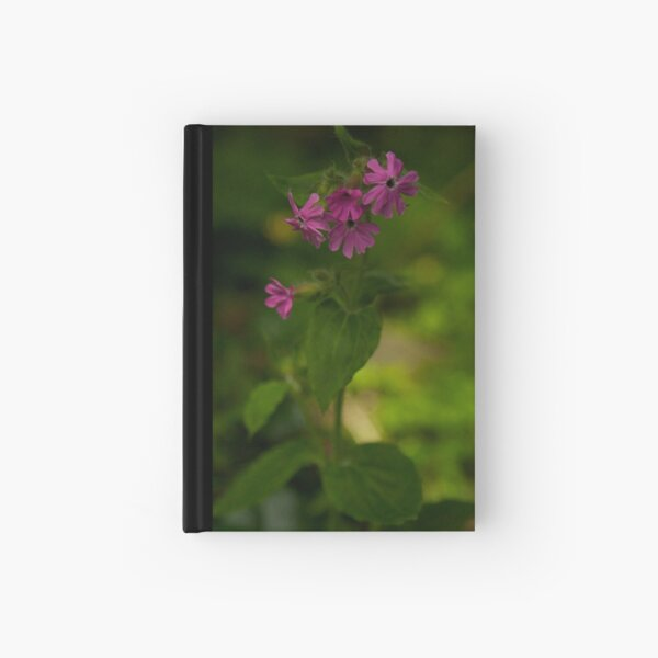 Pink Campion in Prehen Woods, Derry Hardcover Journal